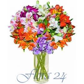 Доставка цветов хуст живые комнатные цветы в туле